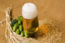 Ученые доказали, что пиво предотвращает болезни Паркинсона и Альцгеймера