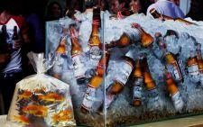 Оптимальная температура употребления пива