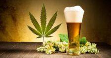 Пиво не сдаст позиции марихуане