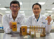Разработка ученых Сингапура – «здоровое» пиво на пробиотиках